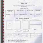 American Passport Renewal Form Pakistan Universal Network