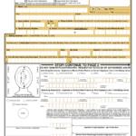 DS 11 Form 2018 Fillable Printable Online PDF Sample
