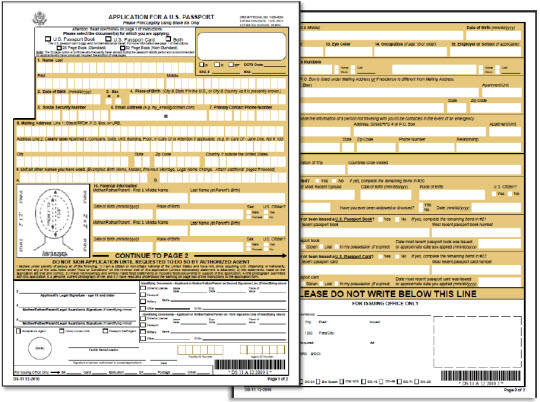 DS 11 New Passport Application Form