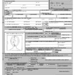 Free Printable Passport Application Form Passport