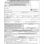Online Passport Application Filled Form Sample PDF Template