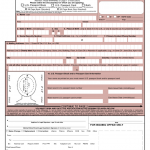 Application For A U S Passport Name Change Data