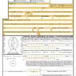DS 11 Form Printable Get DS 11 Passport Form Online To
