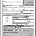 Ethiopian Passport Renewal Application Form In Canada