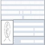 Fill Free Fillable Form DS 82 U S PASSPORT RENEWAL