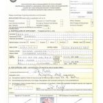 How To Apply For A Passport For A Child In South Africa