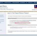 How To Apply For Passport Online A Step by step Guide
