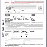 Nigerian E Passport Renewal Application Form Form