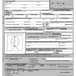 Png Passport Application Forms Renewal 10 Free Cliparts